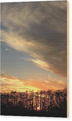 Everglades Clouds Wood Print by AR Annahita
