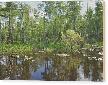 Everglades Lake Wood Print by Rudy Umans