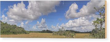 Everglades Landscape Panorama Wood Print by Rudy Umans