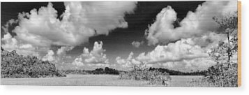 Everglades Panorama Wood Print by Rudy Umans