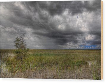 Everglades Storm Wood Print by Rudy Umans