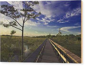 Everglades  Wood Print by Swank Photography