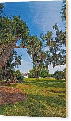 Evergreen Plantation II Wood Print by Steve Harrington