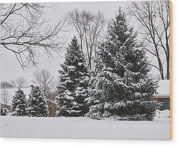 Evergreens In The Snow Wood Print
