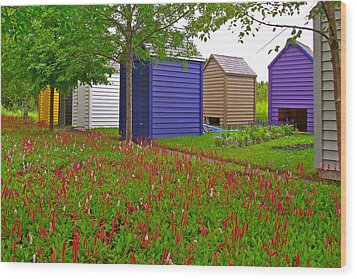 Every Garden Needs A Shed And Lawn In Les Jardins De Metis/reford Gardens-qc Wood Print by Ruth Hager