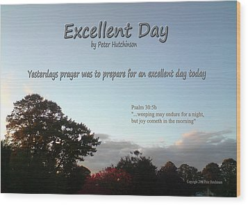 Excellent Day Wood Print