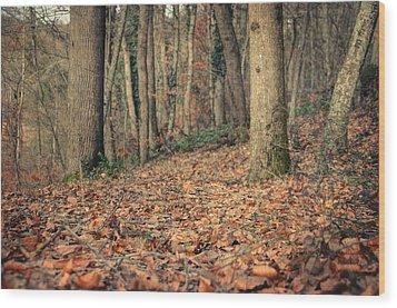 Expectation Wood Print by Taylan Apukovska