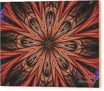 Explosion Of A Carrot  Wood Print by Fania Simon
