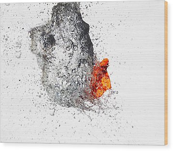 Explosive Water Balloon Wood Print by Jay Harrison