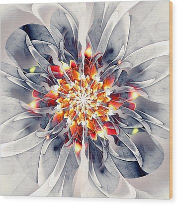 Exquisite Wood Print by Anastasiya Malakhova