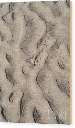 Extraterrestrial Wood Print by Luke Moore