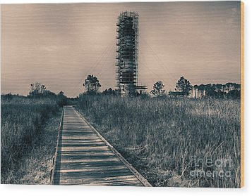 Extreme Makeover Lighthouse Edition Wood Print by Tony Cooper