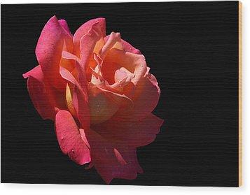 Wood Print featuring the photograph Eye Catcher by Doug Norkum