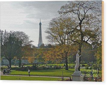 Eye Full In Jardin De Tuileries Wood Print