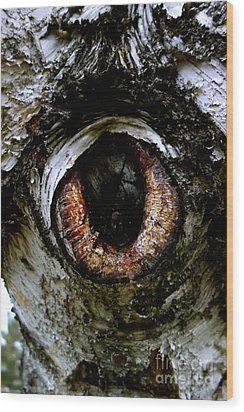 Eye In The Tree 1 Wood Print by Jacqueline Athmann