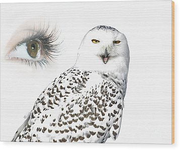 Eye Of Purity And The Mysterious Snowy Owl  Wood Print by Inspired Nature Photography Fine Art Photography