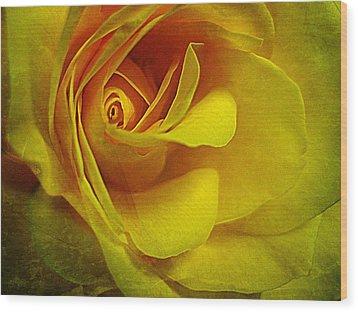Eye Of Rose Wood Print