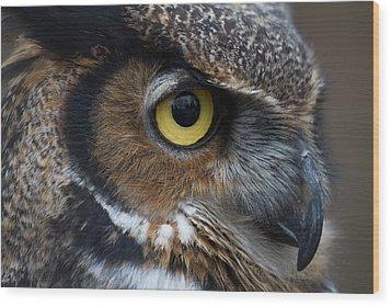 Eye Of The Owl Wood Print by Craig Brown