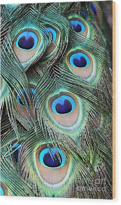 Wood Print featuring the photograph Eye Of The Peacock #2 by Judy Whitton