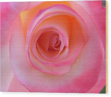 Wood Print featuring the photograph Eye Of The Rose by Deb Halloran