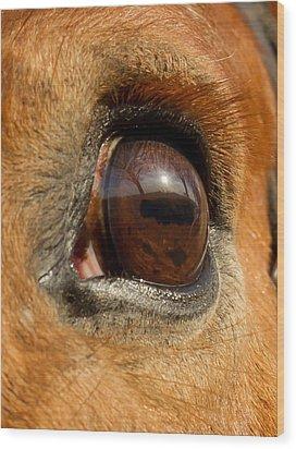 Eye Wood Print by Paulina Szajek