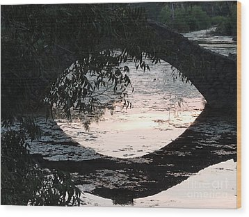 Eye See Colors Of A Lagoon At City Park In New Orleans Louisiana Wood Print