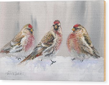 Snowy Birds - Eyeing The Feeder 2 Alaskan Redpolls In Winter Scene Wood Print by Karen Whitworth
