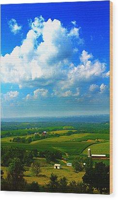 Eyes Over Farmland Wood Print