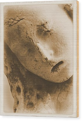 Wood Print featuring the photograph Face Of An Angel by Nadalyn Larsen