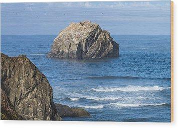 Face Rock Landscape Wood Print by Dennis Bucklin