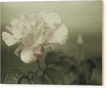 Wood Print featuring the photograph Faded Rose by Mary Wolf