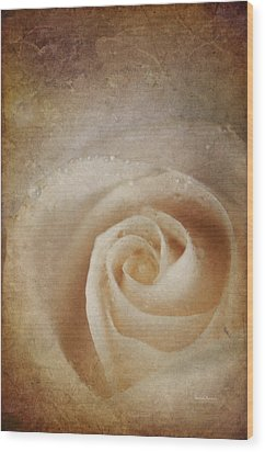 Faded Rose Wood Print