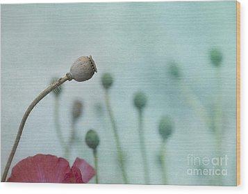 faded summer III Wood Print by Priska Wettstein