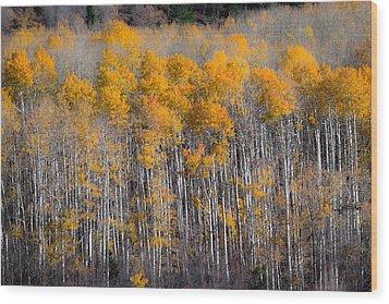 Fading Fall Wood Print