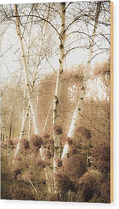 Fading Fall Wood Print by Julie Palencia