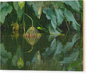 Fairy Pond Wood Print by Evelyn Tambour