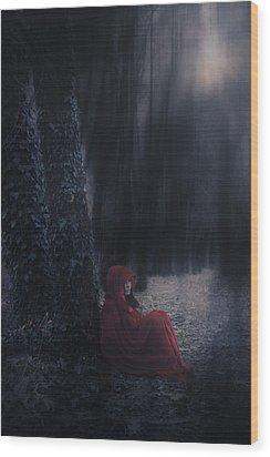 Fairy Tale Wood Print by Joana Kruse