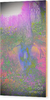 Wood Print featuring the photograph Fairy Tree by Karen Newell