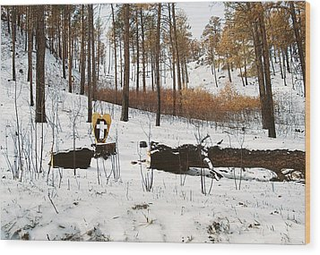 Faith In The Wilderness Wood Print by HW Kateley