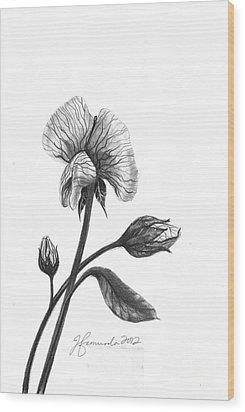 Faith Of A Flower Wood Print by J Ferwerda