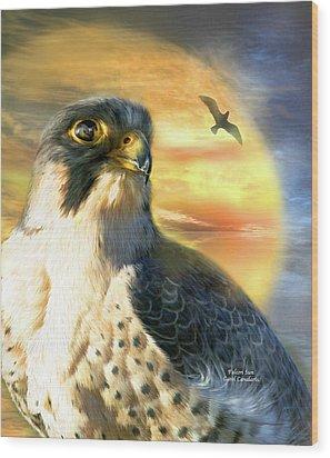 Falcon Sun Wood Print by Carol Cavalaris