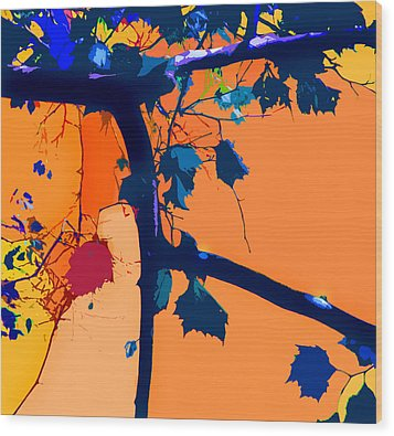 Fall Abstraction 5-2013 Wood Print by John Lautermilch