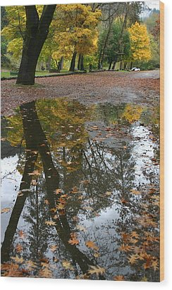 Wood Print featuring the photograph Fall All The Way by Marie Neder