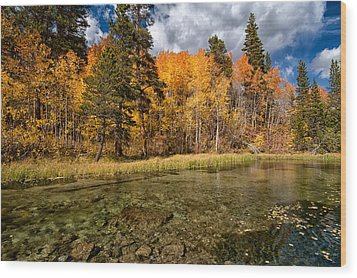 Fall Along Bishop Creek Wood Print by Cat Connor