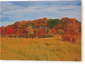 Wood Print featuring the photograph Fall Along The Highway by Andy Lawless