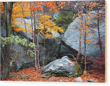 Wood Print featuring the photograph Fall Among The Rocks by Bill Howard