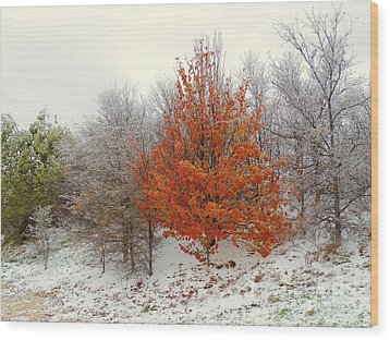 Fall And Winter Wood Print