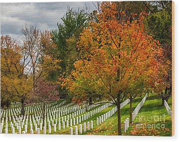 Fall Arlington National Cemetery  Wood Print by Gary Whitton