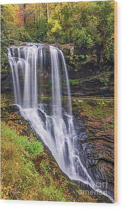 Dry Falls In Autumn Wood Print