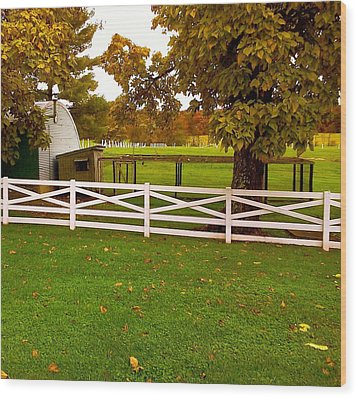 Fall At Eisenhower Farm Wood Print by Amazing Photographs AKA Christian Wilson